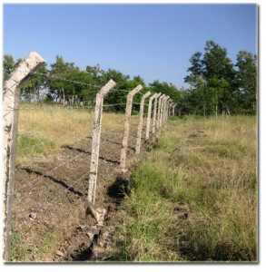 Fence completed on the Orphans Foundation Fund Njiro property